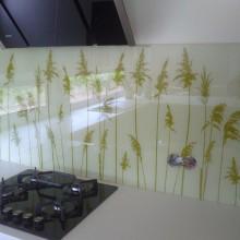 Foto plevele ant virtuves stiklo