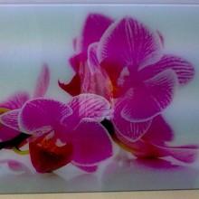 Foto plėvelė stiklui